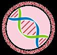 Boston Stem Cell Center Logo