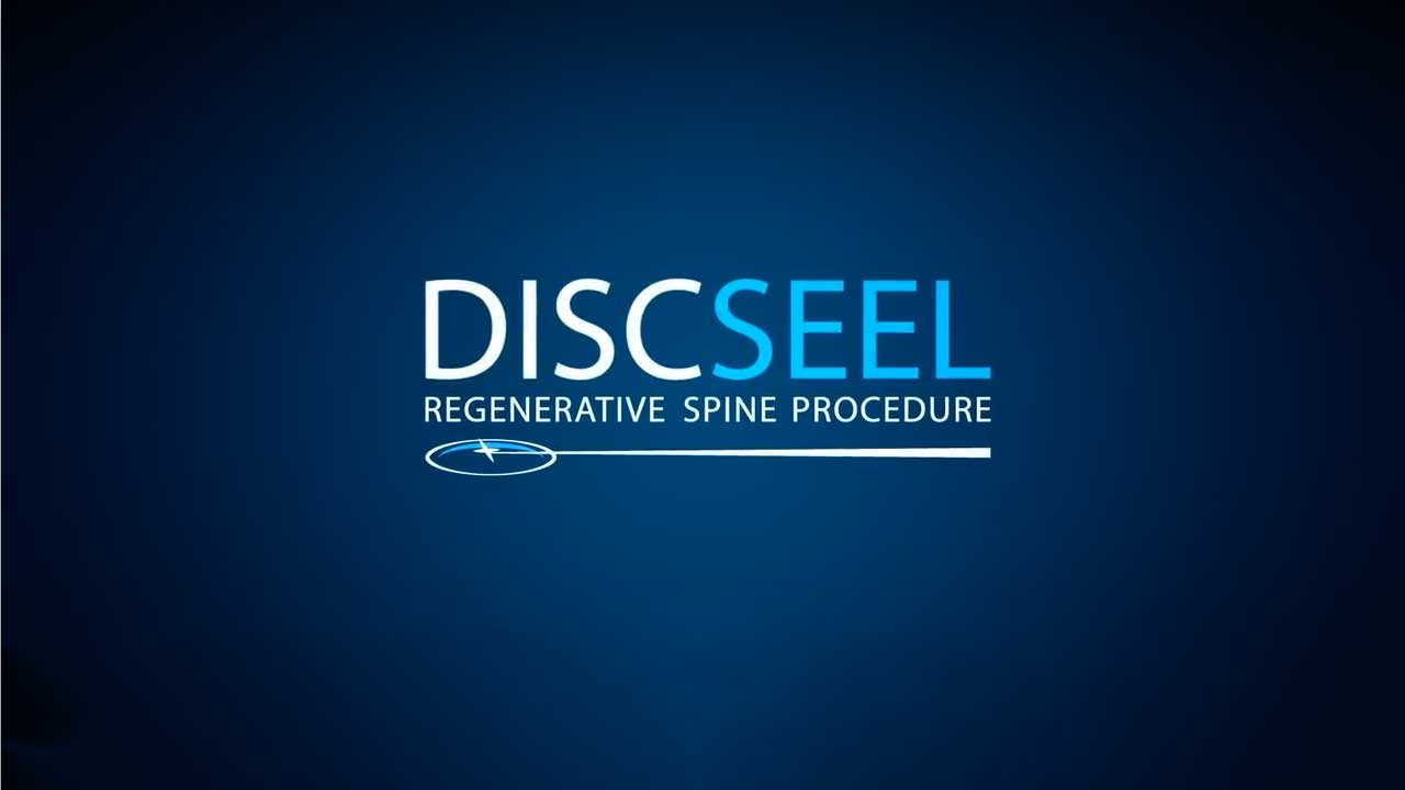 How Discseel works